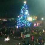 fowlerville christmas in the ville christmas tree