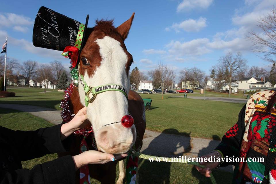 fowlerville christmas in the ville horse